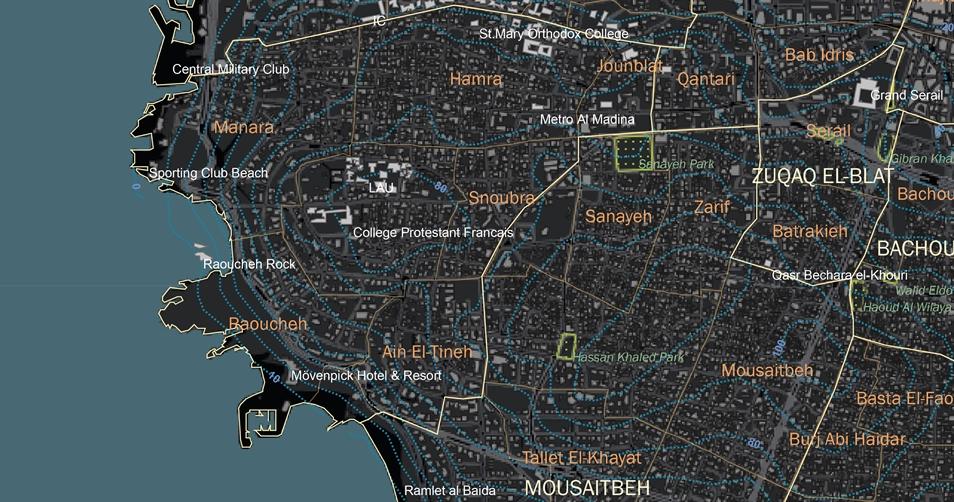 تحتوي الخريطة الأساسية على طبقات من خطوط تحديد الارتفاعات ومناطق السجل العقاري والدوائر البلدية والطرقات الأساسية والفرعية وأراضي الملكية ومخططات المواقع بمنظور علوي والمساحات الخضراء وبعض المعالم المختارة.