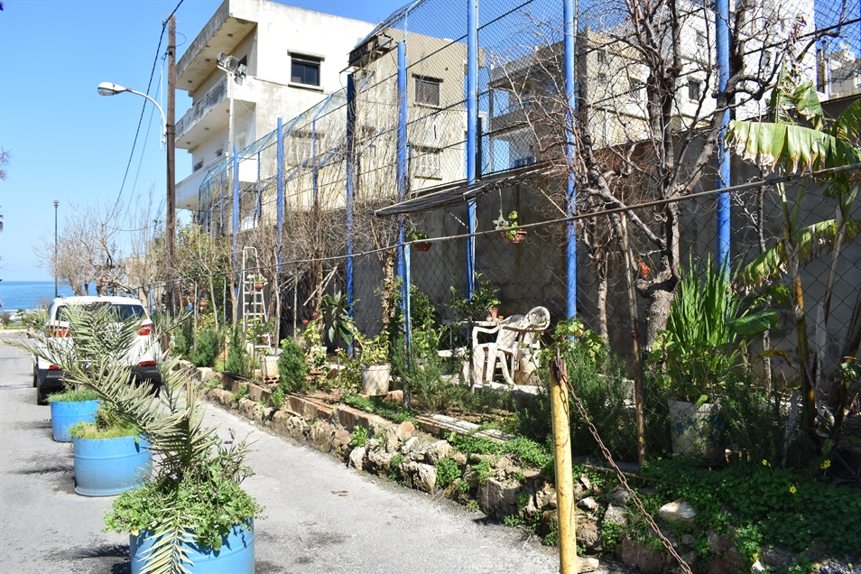Linear pocket garden lining the back of the ACS sports building, including a plastic white chair; we were told by the woman living in the adjacent old building that the garden is maintained by her brother (Photo: Myriam Khoury, March 2020)